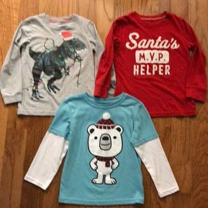 Other - Lot of 3 long sleeve winter theme tees